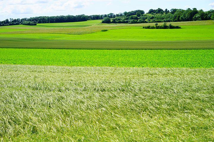 Land Management Testing Laboratories